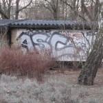 IMG 0018-150x150 in Graffitis machen graue Wände lebendig.. Teil I